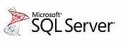 MS SQL Server developers