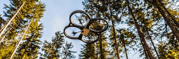 drone navigates through trees